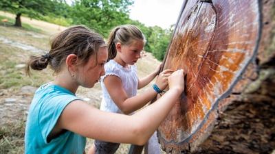 Naturerlebnis für Familien: die Bildungsstätte Sellnitz. Foto: Florian  Trykowski