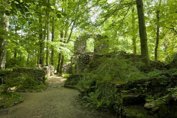 Foto: Kloster Altzellawww.schloesserland-sachsen.de