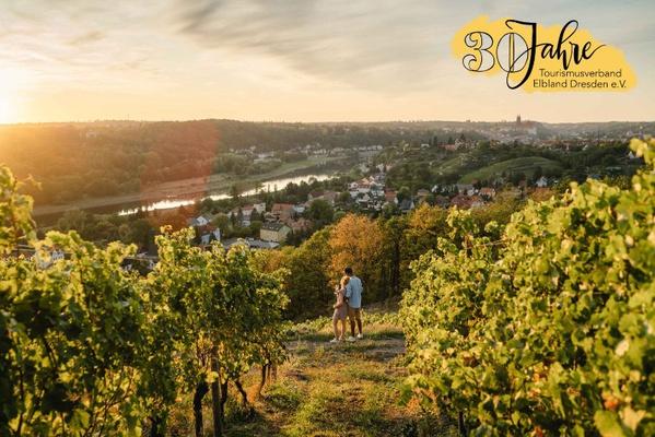 Das Elbland bietet traumhafte Aussichten in den Weinbergen. © Erik Gross (DML-BY)