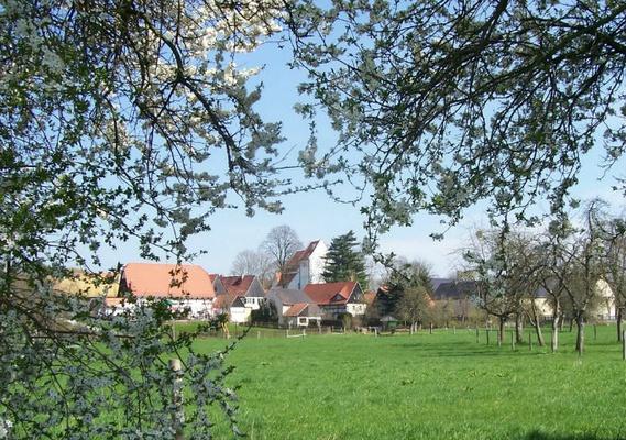 Frühlingserwachen in Höfgen - Markus Thieme