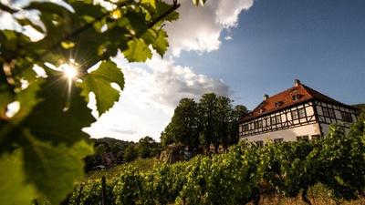 Idyllisches Weingut Hoflößnitz gelegen im Dresden Elbland. Foto: Martin Förster (DML-BY)