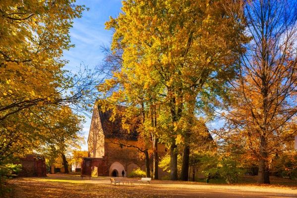 Klosterpark Altzella / Foto: Sylvio Dittrich