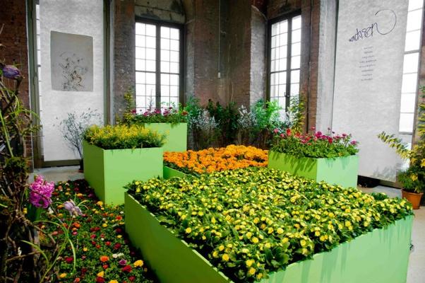 Dresdner Frühling im Palais 2014Foto: Sebastian Thiel