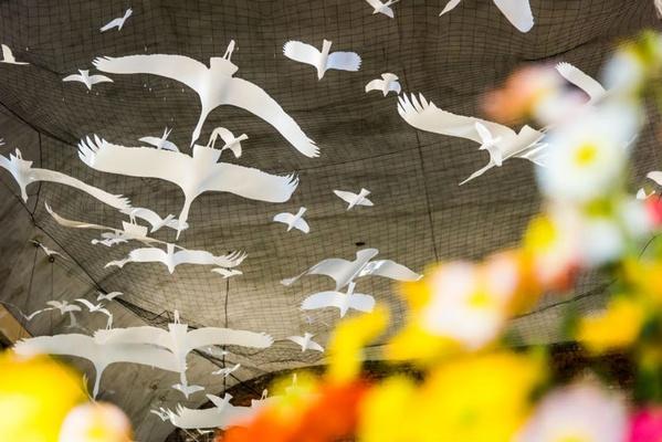 Vogelschar, Dresdner Frühling im Palais 2018, Foto: Sebastian Thiel, THIEL Public Relations
