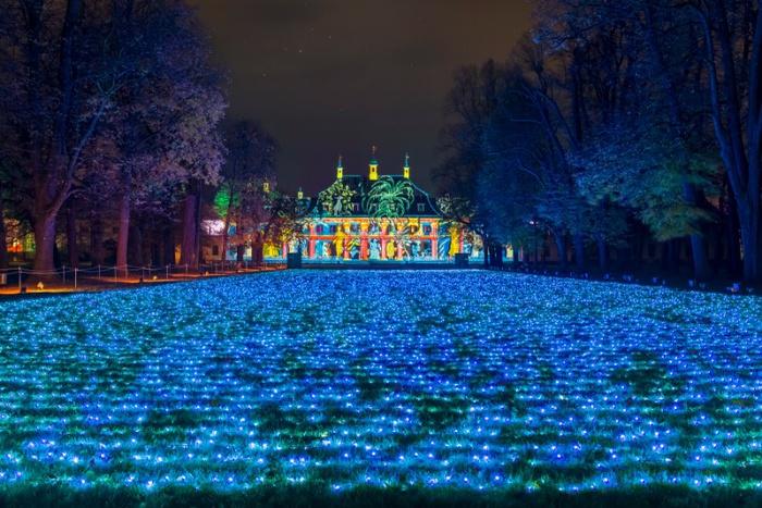 Field of Lights © Christmas Garden, Michael Clemens