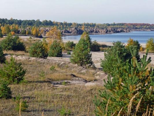 Naturschutzgroßprojekt Lausitzer Seenland Blunoer Südsee: Foto: Elfi Malz